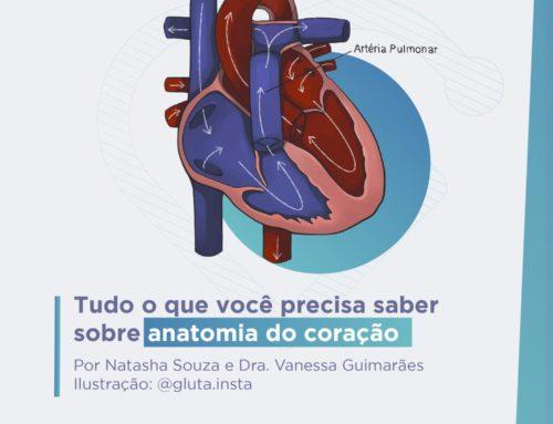 Tudo o que você precisa saber sobre Anatomia do Coração