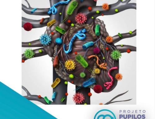 O que é a Endocardite Infecciosa?